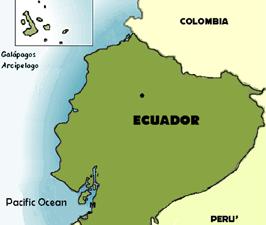 iguana-cart1